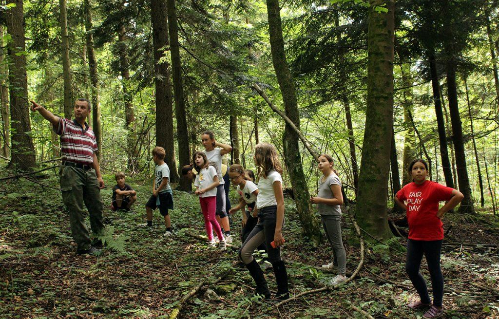 Počitniško varstvo in tabori
